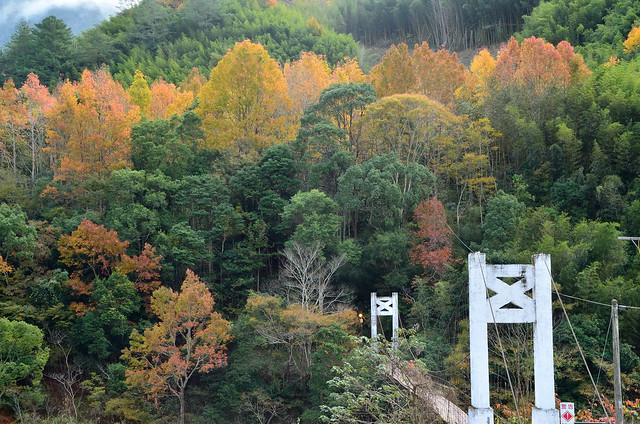 2012.01.01 新竹 / 秀巒