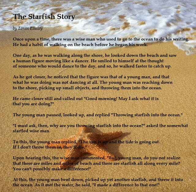 Starfish story flickr photo sharing