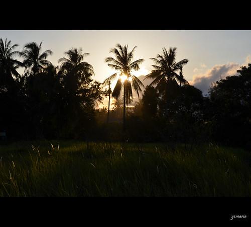 beach indonesia westkalimantan singkawang nikond7000 yemaria