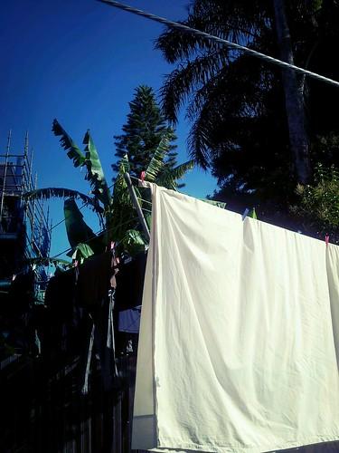 Grateful for my clothesline!