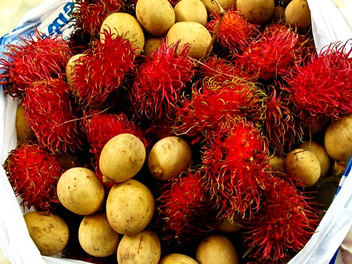 IMG_0939 Rambutan and langsat in seasons ,红毛丹和冷撒季节