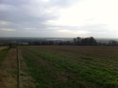 Chichester plain from Halnaker