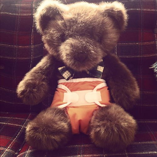 Yes, I diapered a bear...