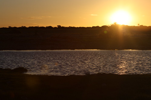 Sunset over the watering hole - Etosha