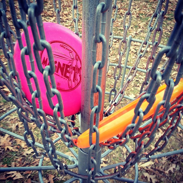Late afternoon frisbee golf fun!
