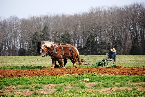 January Plowing