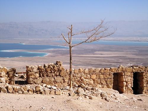 Masada (20)