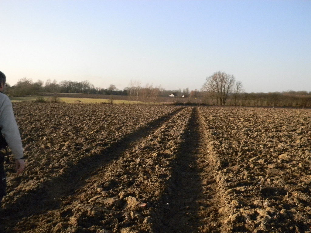 Ploughed field (But, luckily, re-instated path). Pluckley Circular