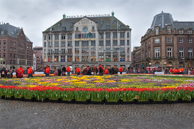 Eerste Nationale Tulpendag - First National Tulip Day in the Netherlands