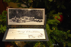 111225 Christmas A. Rita