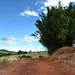 Rural Scene by Dircinha -