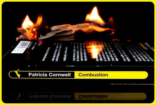 Combustion - 2011-01-28