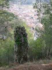 Pietra Longa
