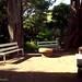 Small photo of Parque Lota
