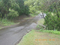 Vehicle access, Queens Park, Burnett River, Bundaberg