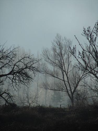 Foto casi en blanco y negro by JoseAngelGarciaLanda
