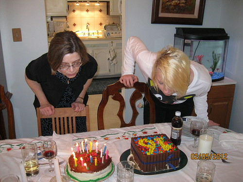 2012: 2 cakes for 2 girls