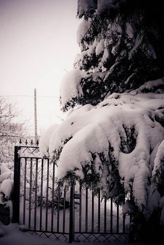 Storia di neve 05
