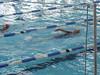 HSC swim photos - Counties 2014 028