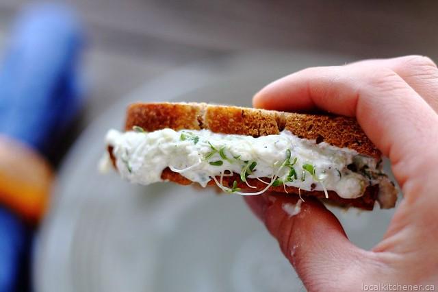 tzatziki sprout sandwich