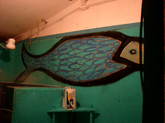 the-Irie-fish-in-our-bathroom
