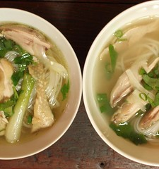 soto ayam(0.0), wonton(0.0), udon(0.0), noodle(1.0), bãºn bã² huế(1.0), noodle soup(1.0), kuy teav(1.0), kalguksu(1.0), pho(1.0), food(1.0), canh chua(1.0), dish(1.0), soup(1.0), cuisine(1.0), nabemono(1.0),