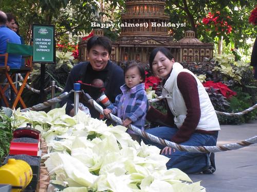 Holidays @ US Botanic Garden