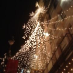 Macy's lights