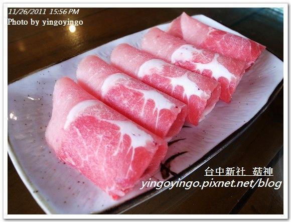 台中新社_菇神20111126_R0044214