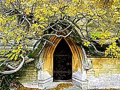 The Court of Owain Glyndŵr