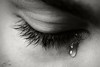 A Tear of Grief by King | حسن أبوالريش