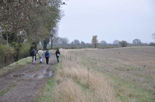 Walking to the sloe bushes