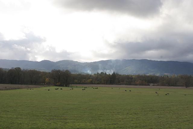 laytonville rancheria