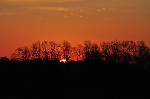 trees ontario beautiful sunrise geotagged picton