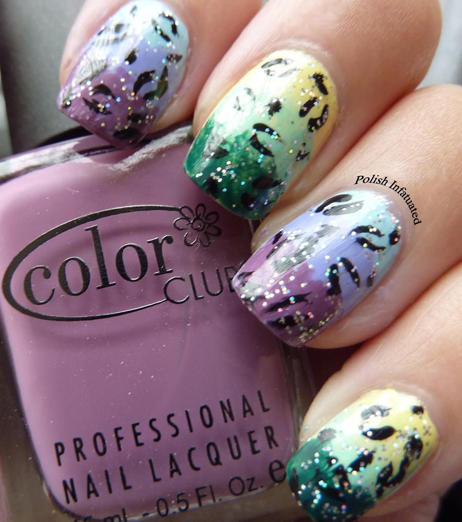 sponge rainbow2