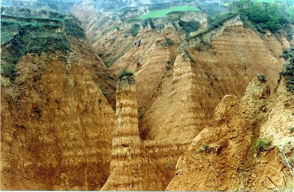 【图】巨厚的黄土沉积层