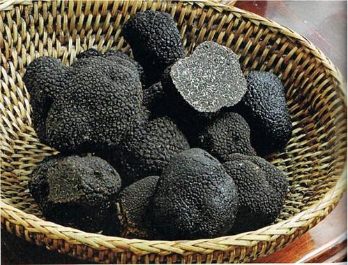 truffes_noires_du_perigord