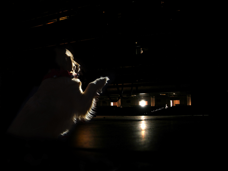 A Moment On Stage at San Francisco Ballet
