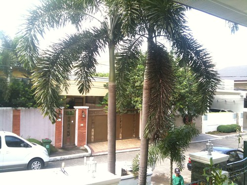 Third World Upper Class Gated Community Street Scene