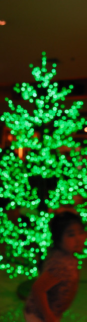 blur-trinoma-christmas-tree