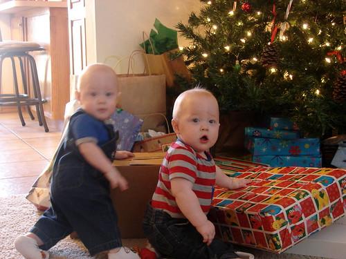 Christmas 2011 Pic 3