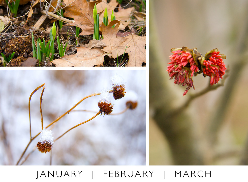January February March