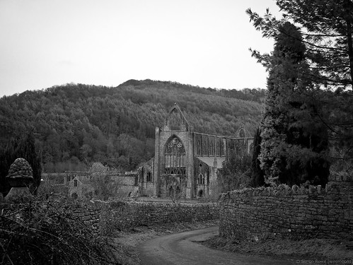 Tintern Abbey (lane view)
