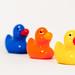 ducks in a row by ehpien