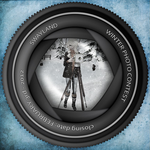 SwayLand Winter Photo Contest