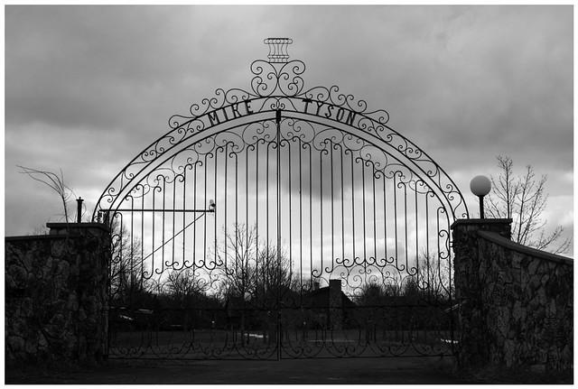 Tyson Gate