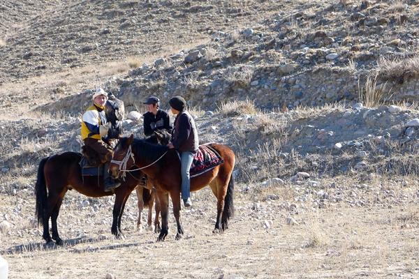 horses outside bishkek