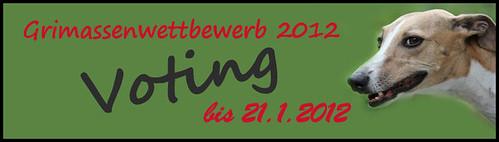 VotingGrimassenw2012GR