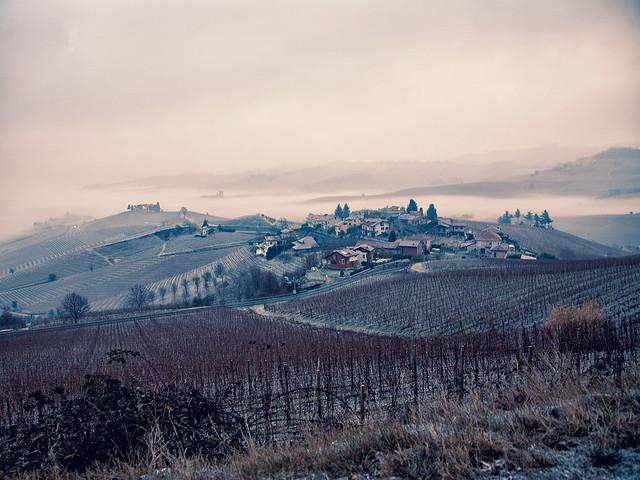 Nebbia e Langhe [all'alba]