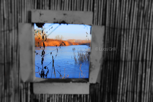 Window on the Lagoon